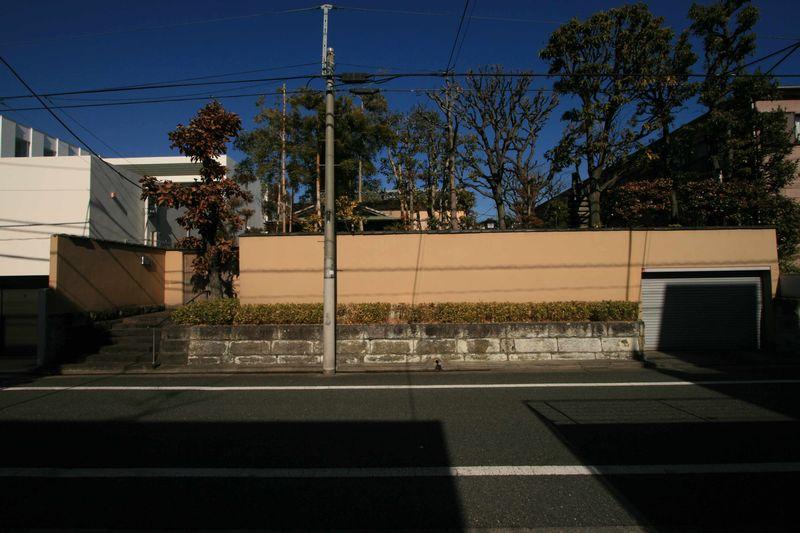 IMG_7244(中)